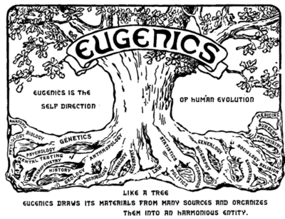Eugenics is the self direction of human evolution